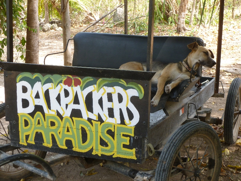 Welcome to Backpackers Paradise