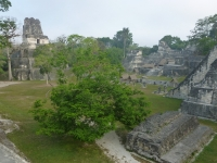 Tikal Grand Plaza