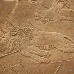 Assyrian Lion Hunt - British Museum
