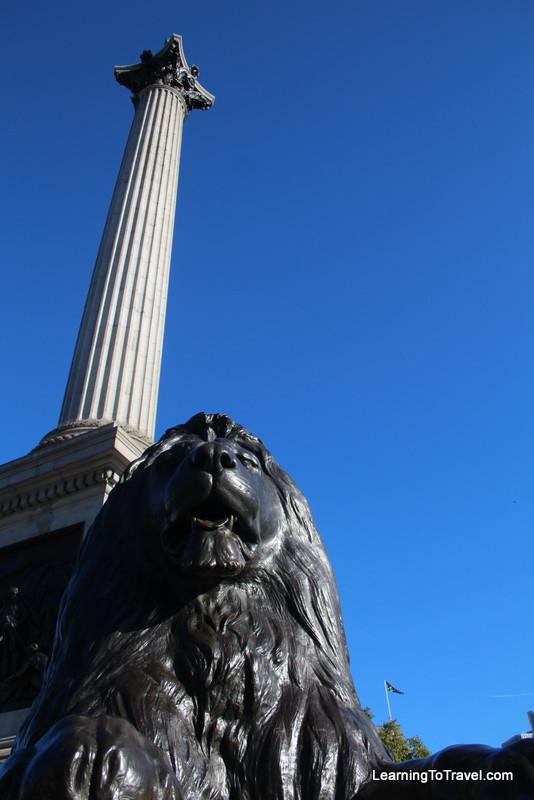 Lion at Trafalger Square