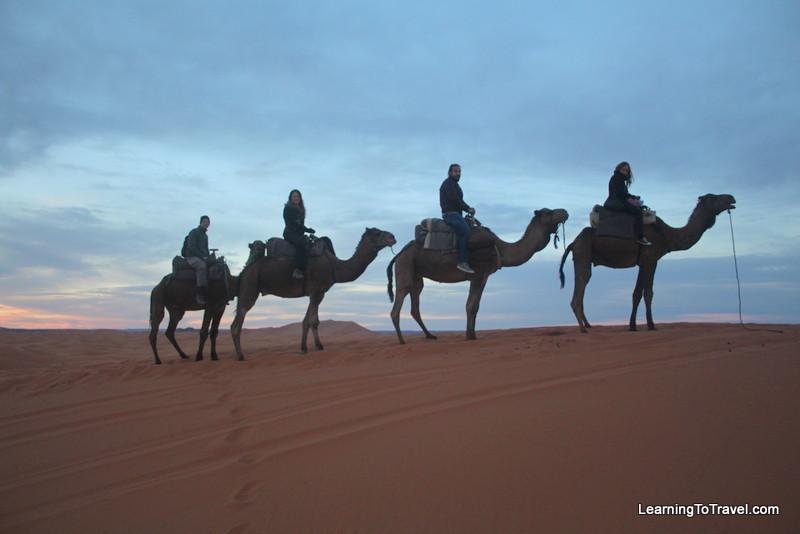 On Camels