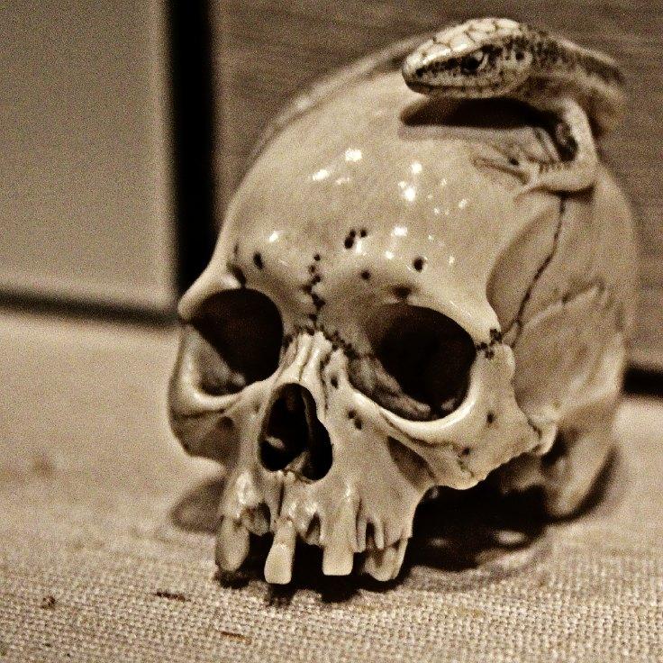 British Museum skull