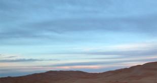 camel train in sahara desert